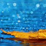 Можно ли пить воду при поносе